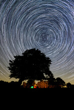 Circumpolar Star Trail With A Tree Silhouette And A Campfire In The Background, Emilia Romagna, Italy