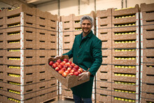 Portrait Of Worker Holding Crate Full Of Red Apples In Organic Food Factory Warehouse.
