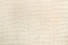 Fondo Textura De Cuero Claro Beige Con Superficie Irregular
