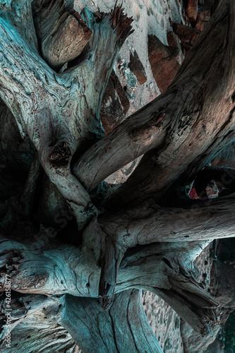 Fototapeta Piękne naturalne tło, drewniany konar pełen pęknięć, strukturalna tekstura. obraz