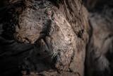 Fototapeta Kamienie - Kamienne piękne tło, naturalna skalna tekstura.