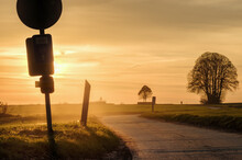 Silhouettes Of Street Signs And Trees On The Roadside During Sunset