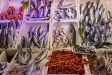 Fresh Fishes For Sales In Turkish Market In Antalya, Turkey