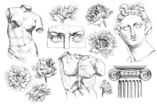 Set Of Hand Drawn Classical Sculptures And Flowers