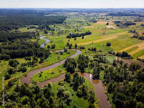 Fototapeta rzeka wieprz, lubelskie, lato obraz
