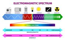 Set Of Electromagnetic Spectrum Diagram Or Radio Waves Spectrum Or Ultraviolet Light Diagram. Eps 10 Vector, Easy To Modify