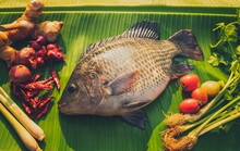 Fresh Tilapia Fish With Aromatic Herbs Spices And Vegetables Ingredients Ready To Cooking Delicious Thai Tom Yum Food. Balanced Diet Or Clean And Fresh Cooking Concept