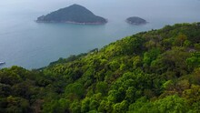 Dense Vegetated With Leafy Trees Slope Of Mount Davis Aerial HK Northwest Cape