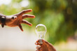 Businessman or electrical engineer In the hand holding the light bulb there is a natural background to experiment with solar energy. Electric power concept Solar energy Energy saving
