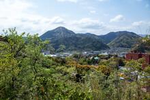 源氏山公園の山頂広場から望む葛城山の春景色|全長1800mのロープウェイで山頂へ登れます。
