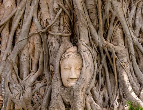 Slika na platnu Travel in Thailand