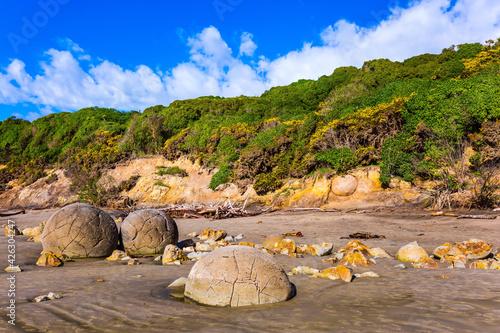 Fotografia The boulders Moeraki and their remains