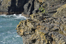 Lichen Covered Cliffs At Tintagel Cornwall