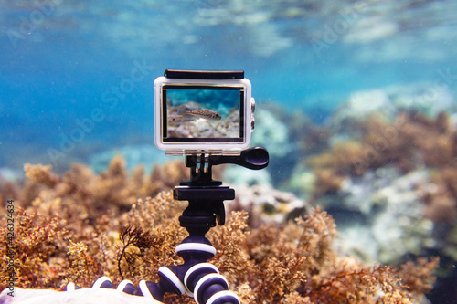 Fotografie, Obraz Using action-camera in waterproof box to make photos and video underwater