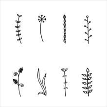 Set Of Botanial And Floral Hand Drawn Cliparts Illustration Vector, Doodle Line Art For Nature Element Design