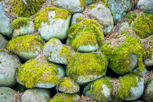 Closeup Shot Of Stones Covered With Moss