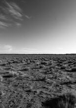 Desert Black And White