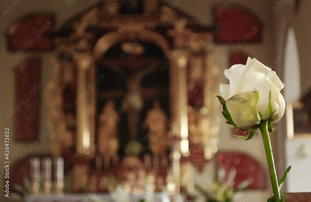 róża w kościele - obrazy, fototapety, plakaty