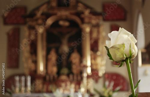 Obraz róża w kościele - fototapety do salonu