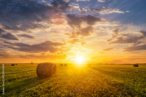 Fotografia, Obraz Sunset in a field with haystacks on a summer or early autumn evening with a cloudy sky in the background