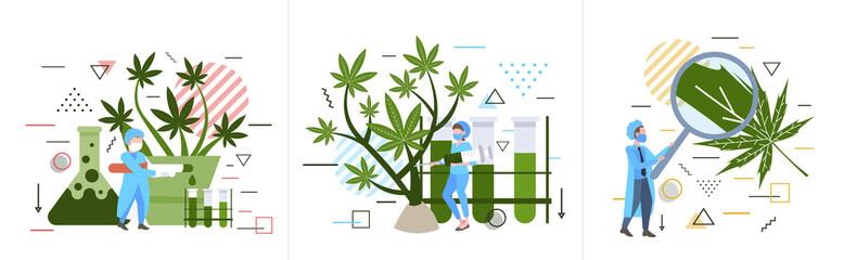 set researchers checking analyzing examining marijuana plant healthcare pharmacy medical cannabis concept horizontal full length