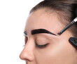 canvas print picture Beautician applying tint during eyebrows correction procedure on white background, closeup