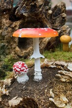 Big And Small Red Toadstool. Poisonous Mushroom - A Two Red Toadstool.