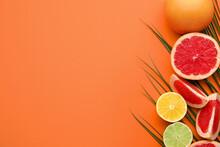 Fresh Citrus Fruits On Color Background