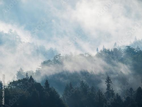 Papel de parede 安芸高田市10月の朝の山霧