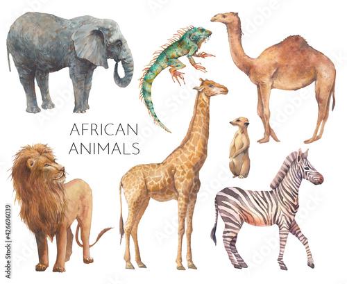 Vászonkép Watercolor safari animals illustration