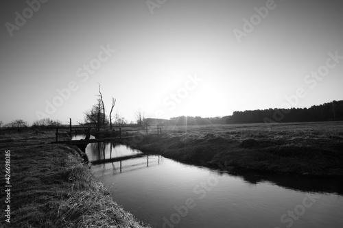 Fototapeta morning on the river obraz