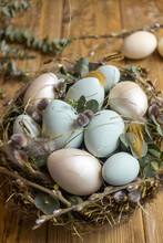 Easter Nest With Green Eggs And Willow Trees On A Wooden Background