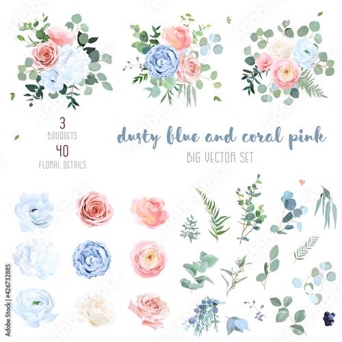 Fototapeta Dusty blue, blush pinkand coral rose, white hydrangea, peachy ranunculus