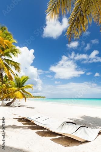 Fotografia Beach scene with sunbeds under coconut palms