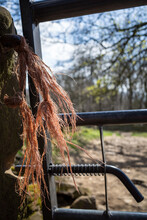 Old Farmers Gate Closeup Fraying String