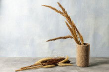 A Bouquet Of Dry Fluffy Spikelets Of Grass And Reeds In A Decorative Vase
