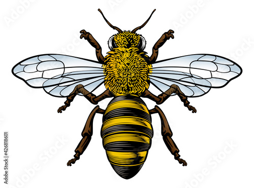 Photo Honey Bumble Bee Vintage Woodcut Engraving Etching