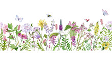 Watercolor Seamless Border With Wildflowers, Bumble Bees, Butterflies And Lady Bugs. Filed Flowers Header.