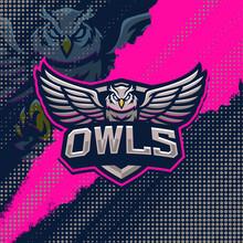 Owls Mascot Logo Design Illustration