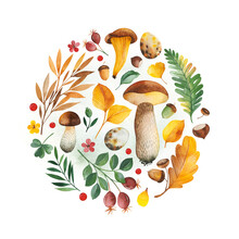 Watercolor Autumn Frame With Leaves,berries,branches,nuts,mushrooms,eggs,acorns,flowers And More. Perfect For Wedding,bridal Shower,stickers,scrapbooking,invitations,logo,Birthday And More