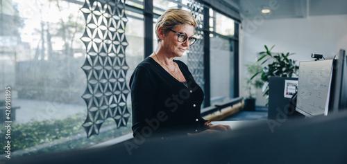 Senior businesswoman working on computer in office