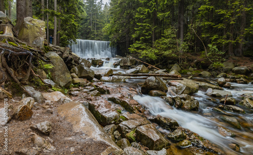 Fototapeta Wild Waterfall