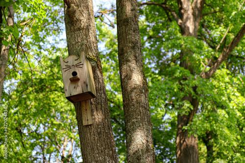 Obraz na plátně Cute wooden cat shaped birdhouse on the tree in a park