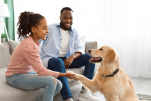 Smiling Black Girl Playing With Dog In The Living Room