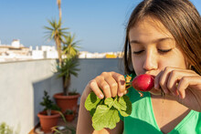 Pretty Teenage Girl Eating A Radish Freshly Picked From The Urban Garden On Her Terrace