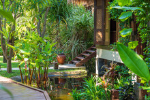 Home And Pond In Tropical Garden, Island Koh Phangan, Thailand
