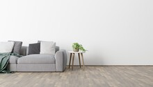 Modern Eco-style Interior With A Space For Poster, Plant And A Wooden Floor. Front View. 3d Rendering Image