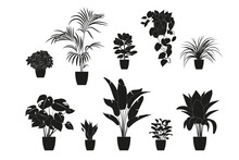 Collection Silhouettes Of Houseplants In Black Color. Potted Plants Isolated On White. Set Green Tropical Plants. Trendy Home Decor With Indoor Plants, Planters, Tropical Leaves.