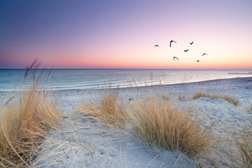 am Strand am Morgen