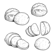 Hand Drawn Sketch Style Mozzarella Cheese Set. Traditional Italian Soft Cheese. Single, In Group, Whole And Sliced, Top View. Vector Illustrations Isolated On White Background.